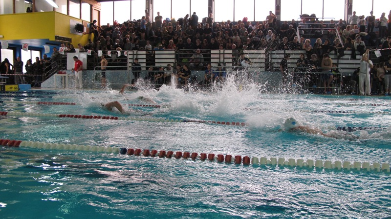 Coppa olimpica di nuoto assegnata alla piscina comunale - Piscina comunale san salvo ...
