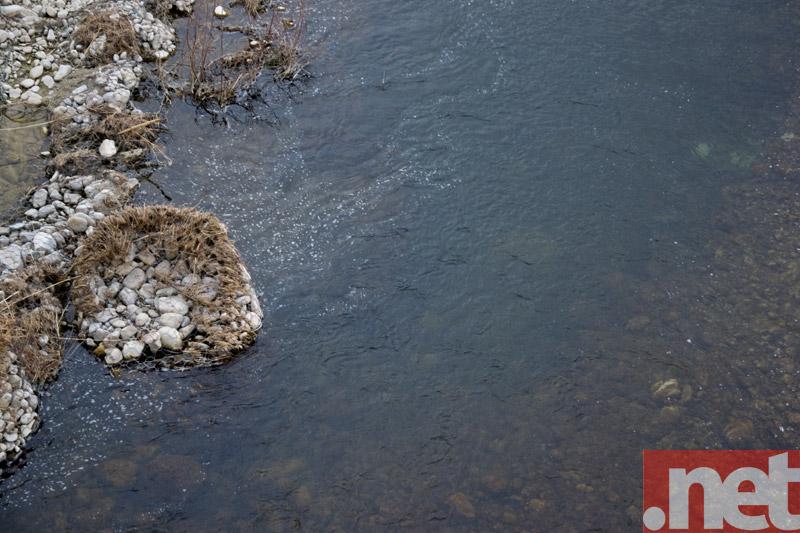 Macchie nere nel fiume Treste